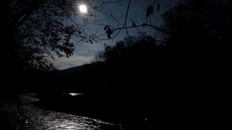 Nighttime photo of a full moon reflected in a stream bordered by trees.