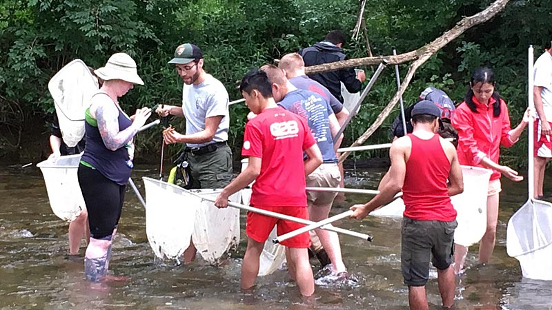 Teens and leaders catching crayfish near Valley Forge.