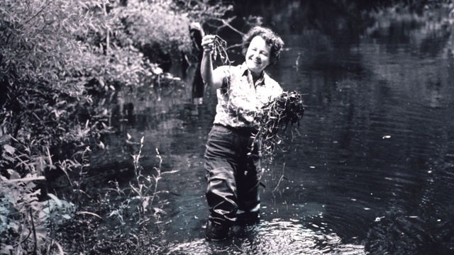 Ruth Patrick in a stream holding clumps of aquatic plants.